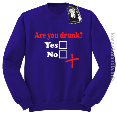 Are you drunk - bluza na imprezę bez kaptura